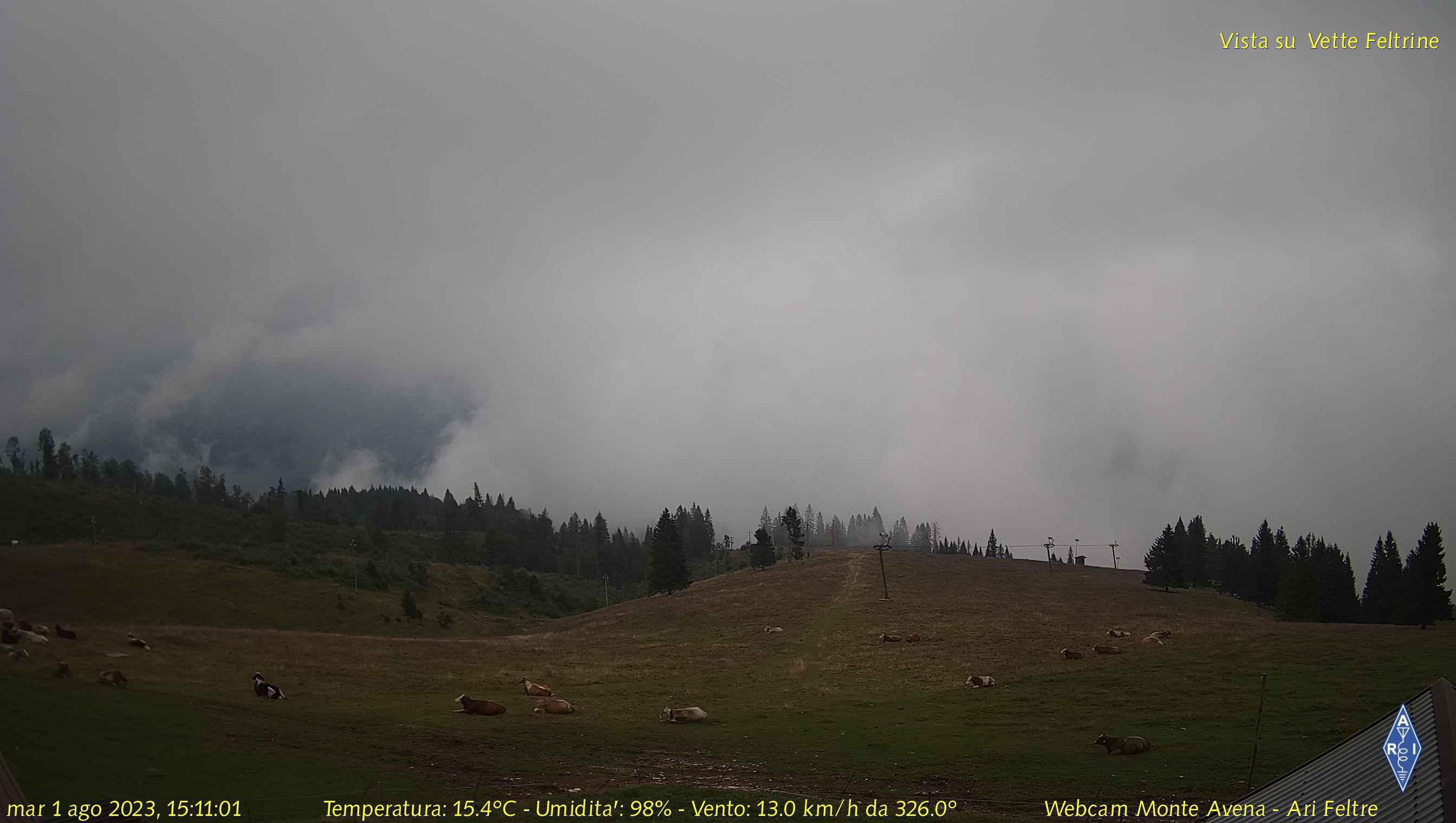 webcam - Monte Avena